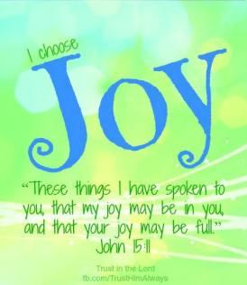 joy-john-15-11