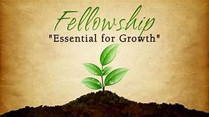 fellowship growth