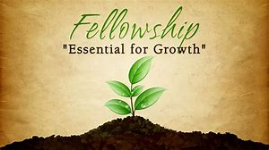fellowship growth