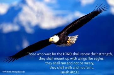 wait Isaiah-40-31